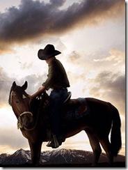 cowboy8