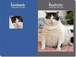 facebookfatcat